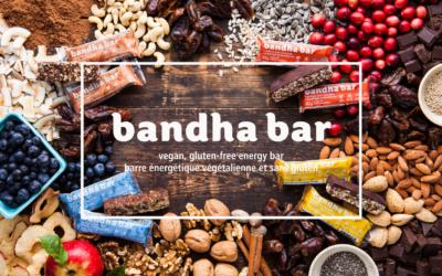 Things We Love: bandha bars